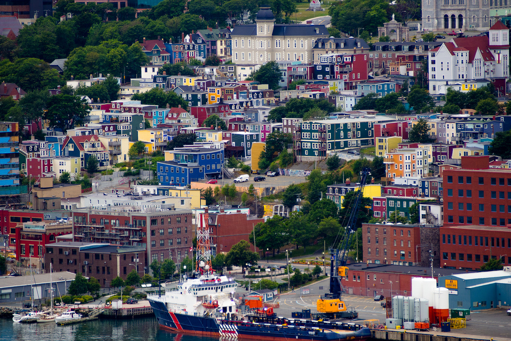 Newfoundland photo