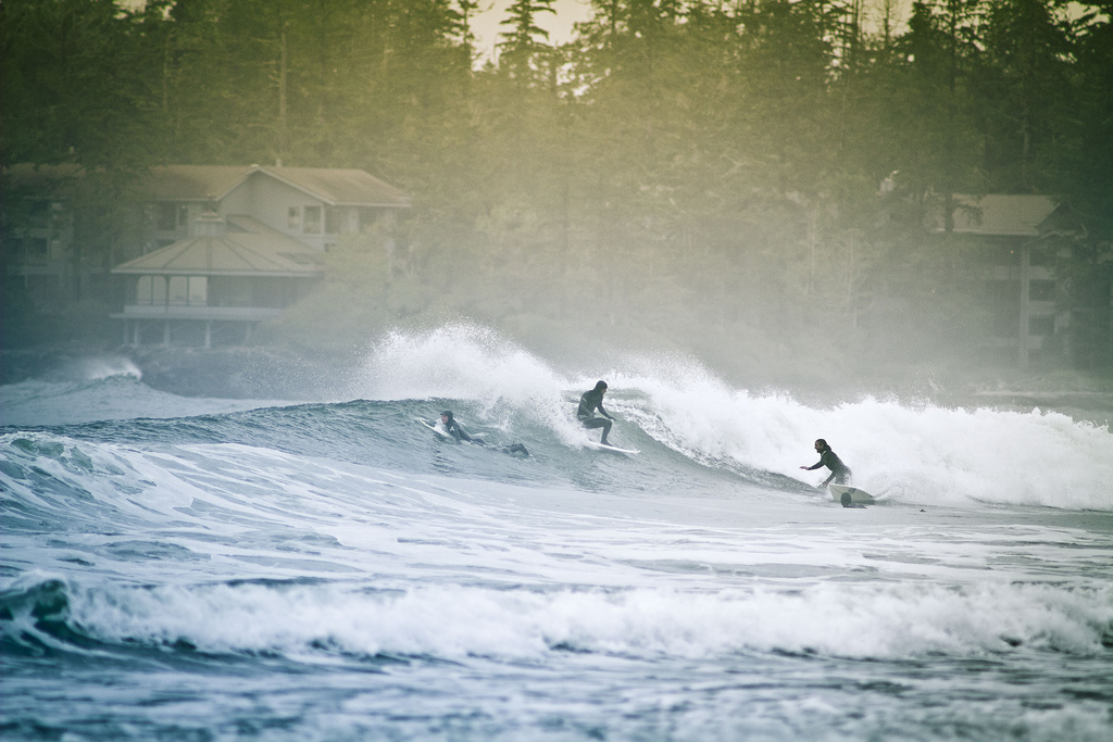 Tofino Surfing photo